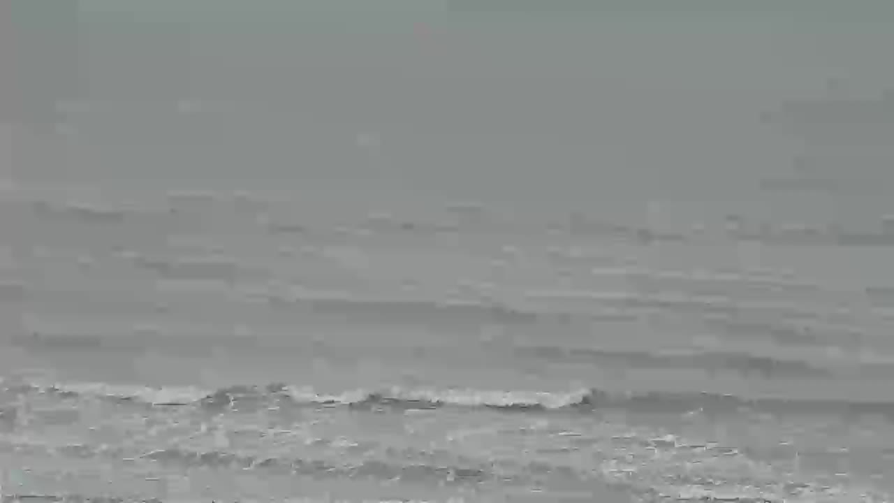 Surfchex Folly Beach Cam for Florence Approach (2018)
