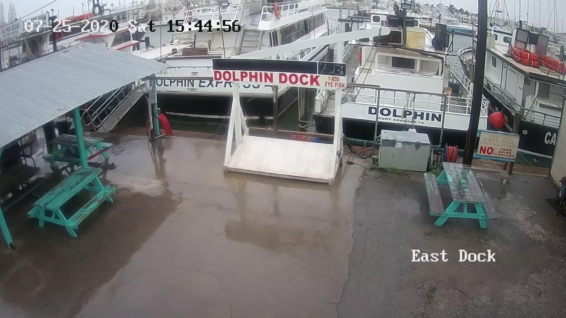 Port Aransas, TX Dolphin Dock Charters Webcam Recording Hanna (2020)