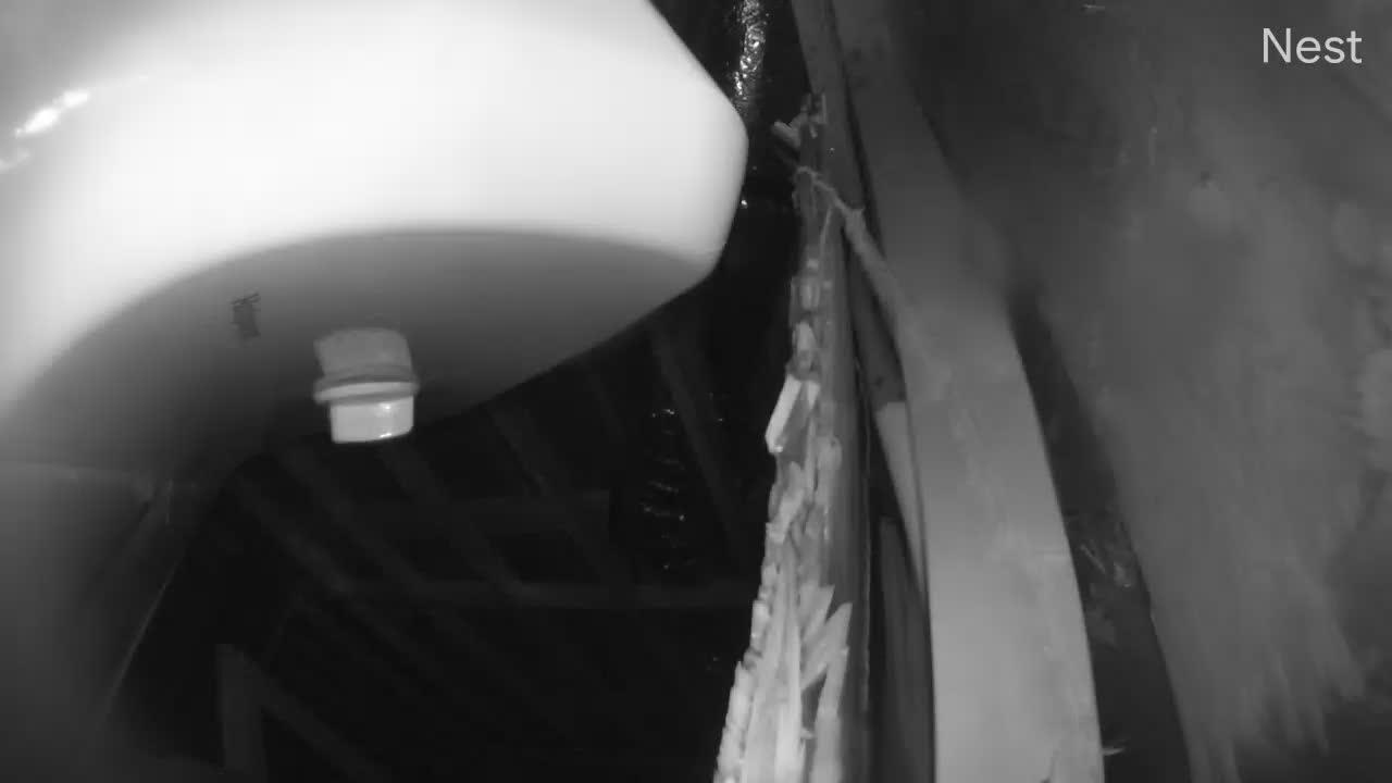West Oak Isle, NC Hurricane Track Cam 3 Recording Isaias (2020)