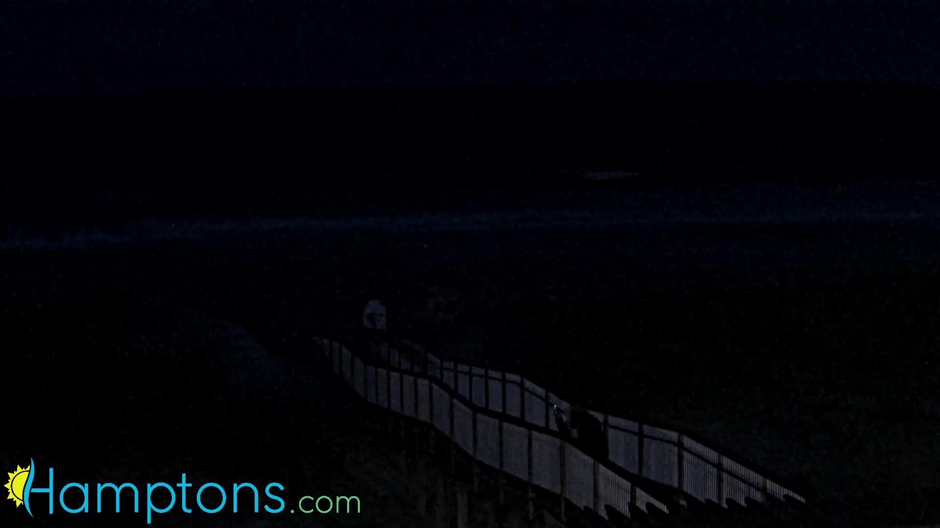 Ponquogue Beach Pavilion, Hampton Bays, New York Henri (2021)