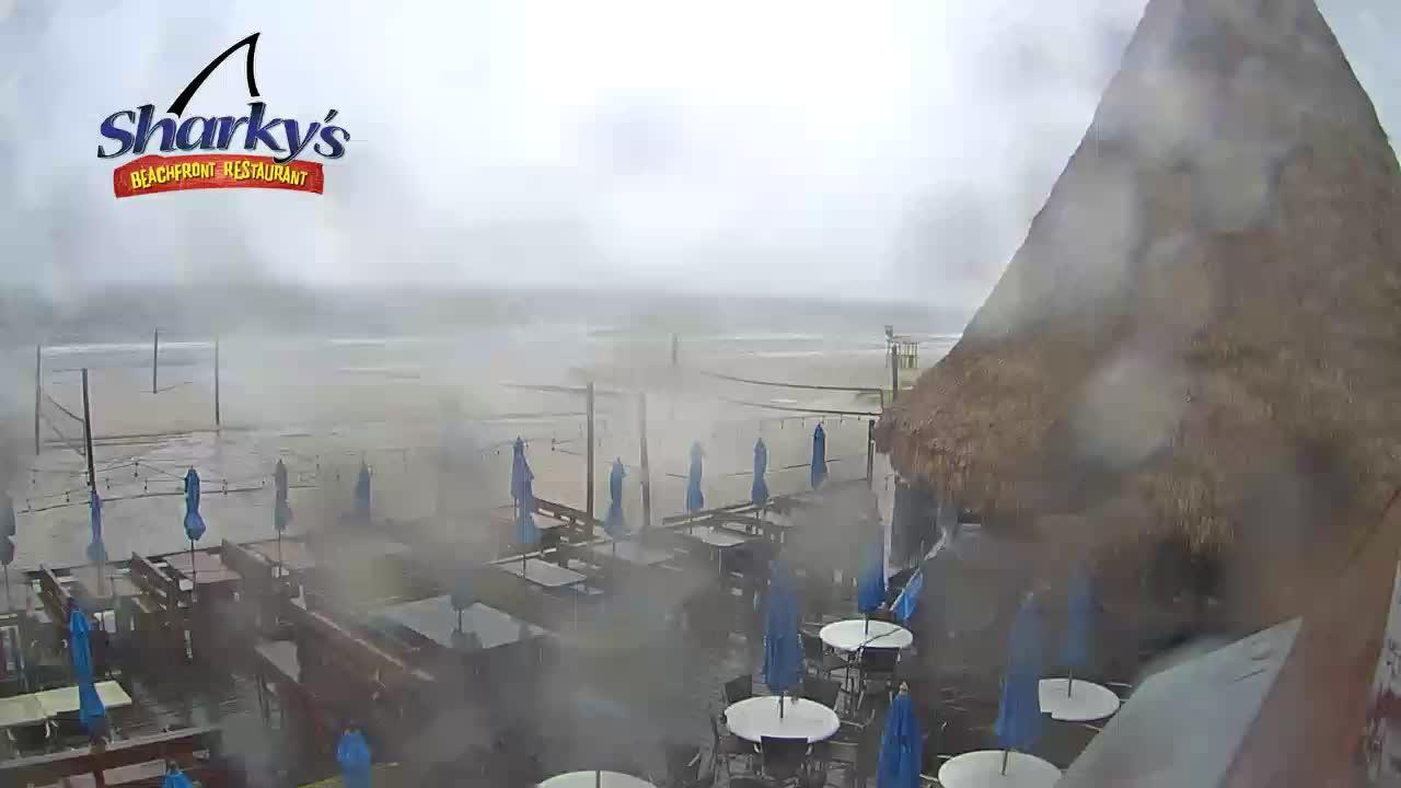 Sharky's Beachfront Restaurant PCB Deck Cam Fred (2021)